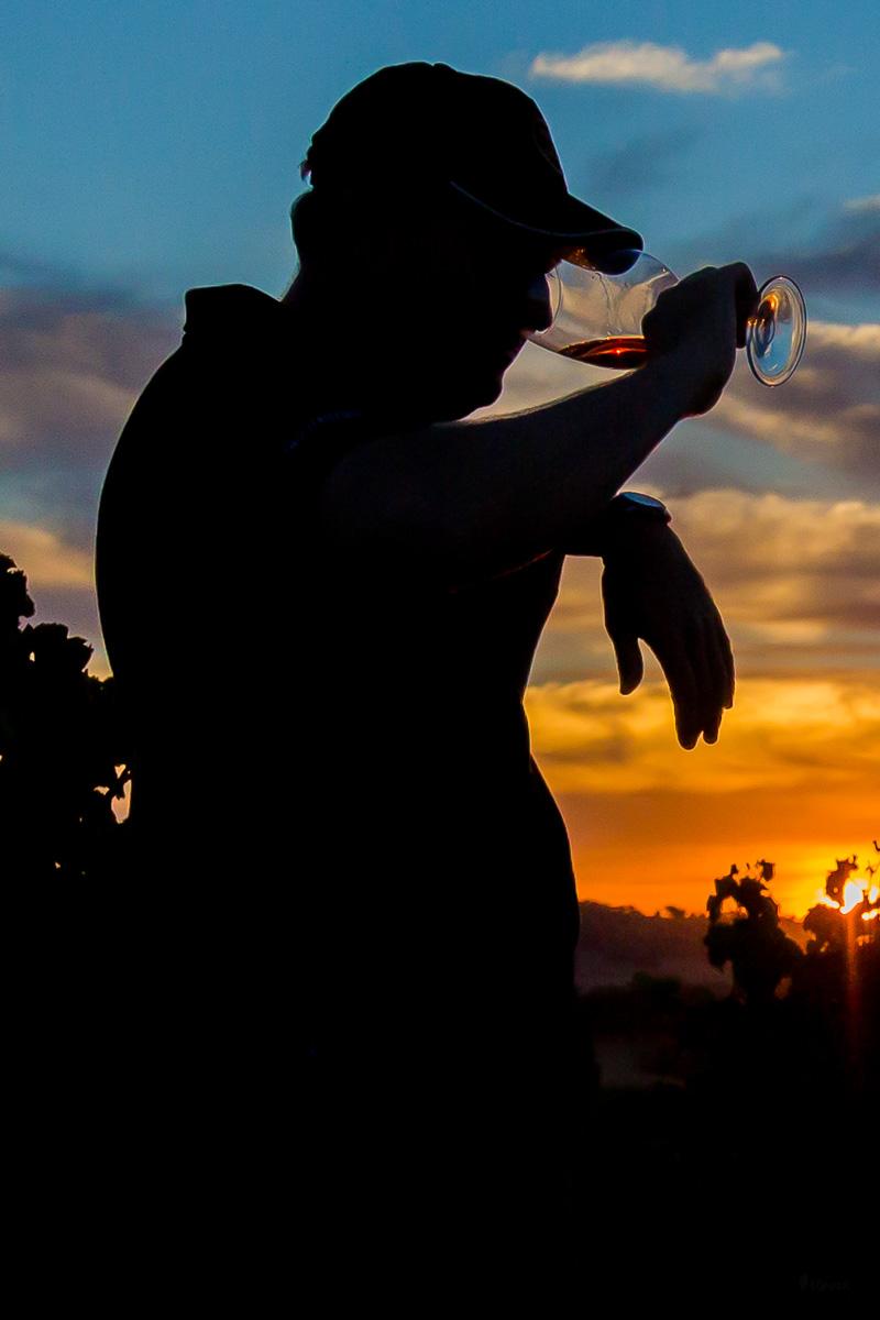 quinta vinho alentejo